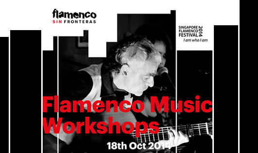 Flamenco Music Workshops
